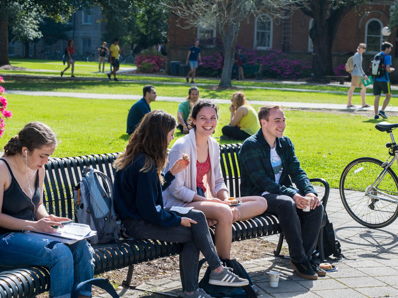 Students relax and chat on campus bench