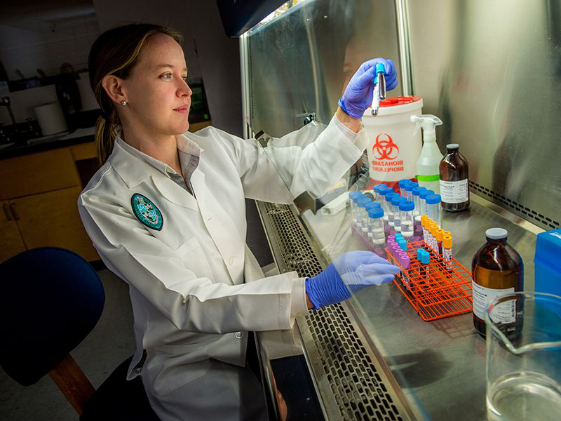 A doctor conducts research in her lab